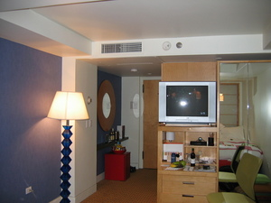 TV and entrance to my room in New York